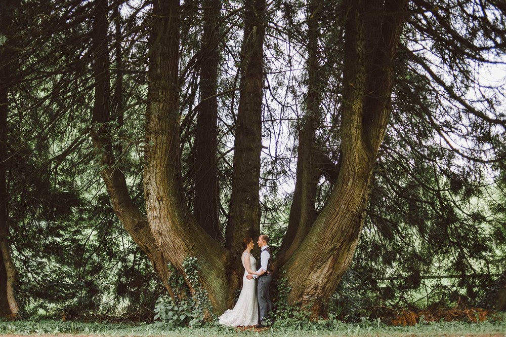bride and groom stand in huge tree trunk