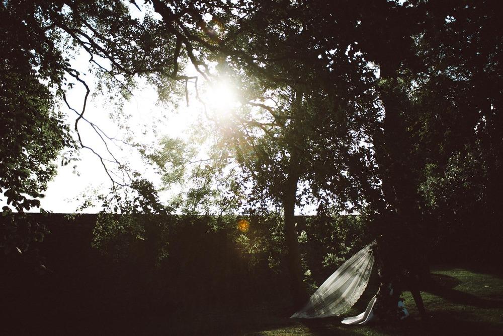 sunlight catches brides veil