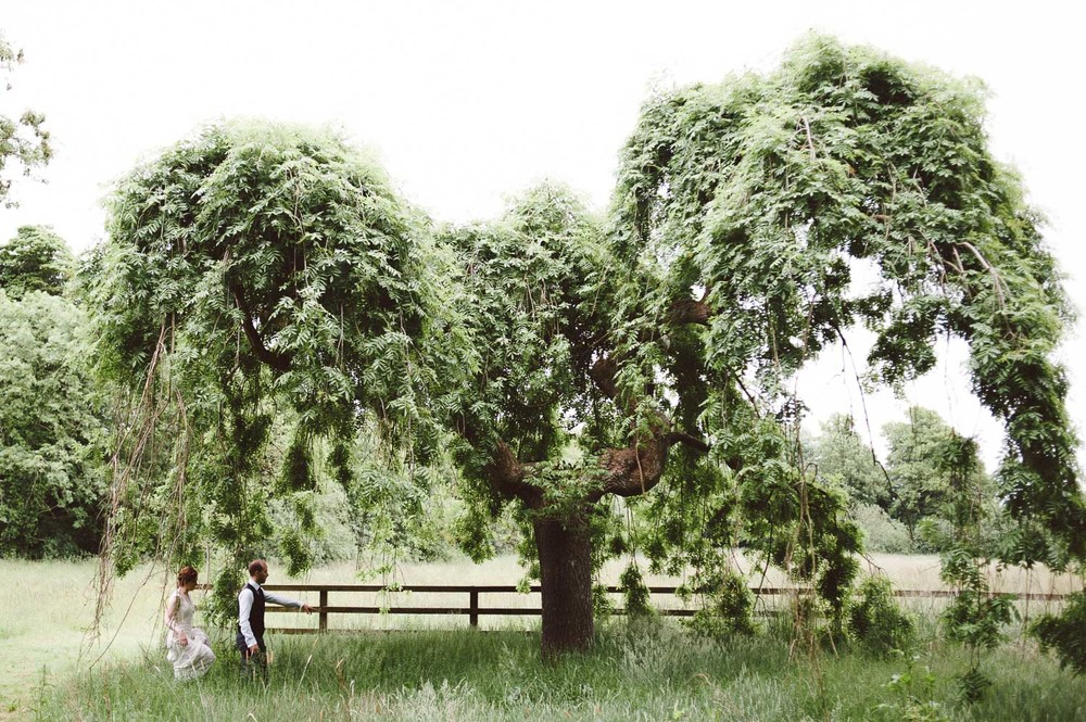 bride and groom walk into large weeping tree