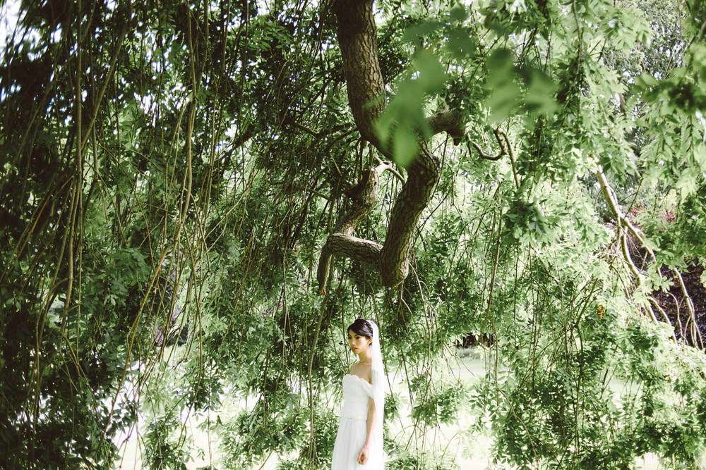 bride under large tree Parkanour Manor House Wedding.