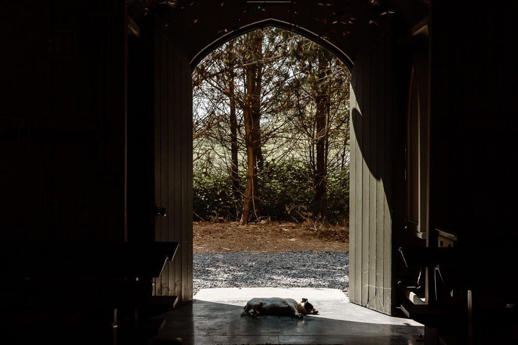dog lying sleeping at open chapel door