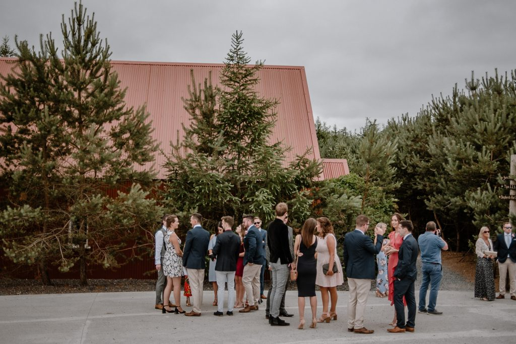 wedding guests at mount druid